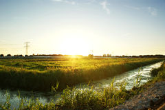 Meadow Landscape stock photo