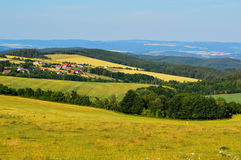 Meadow landscape royalty free stock photography
