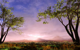 Meadow Landscape. Natural landscape with trees, plants, clouds under a vivid sunset atmosphere Royalty Free Stock Photography