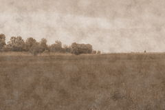 Meadow landscape. Photo in vintage style Royalty Free Stock Photo