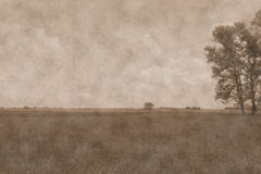 Meadow landscape. Photo in vintage style Royalty Free Stock Image