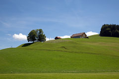 Meadow landscape. With small clouds Royalty Free Stock Photos
