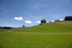 Meadow landscape. With small clouds Stock Photos
