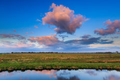 Meadow landscape at sunset Stock Image