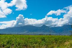 Meadow Leading Up to the Mountains. Flatland leading up to the Mountains on the way to Makawao Stock Photo