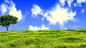 Meadow and lone tree Royalty Free Stock Photography