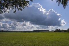 Meadow with big sky white clouds. Meadow with low horizon and big sky with white clouds Stock Images