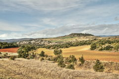 Meadow in lozere, France Royalty Free Stock Image