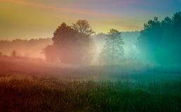 Foggy Meadow in the Lublin region. Royalty Free Stock Photos