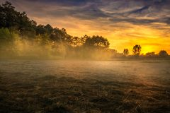 Foggy Meadow in the Lublin region. Stock Images