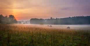 Foggy Meadow in the Lublin region. Stock Photo