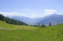 Meadow in Maienfeld, Switzerland Royalty Free Stock Image