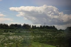 Meadow with many flowers against the sky and clouds.  Stock Photography