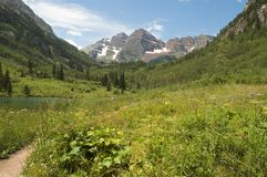 Meadow and the Maroon Bells stock photo