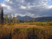 Meadow, Marsh and Mountains Royalty Free Stock Images