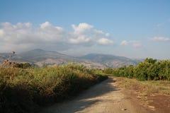 Meadow. S near kibbutz Dafna, Israel Stock Images