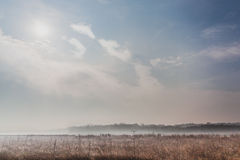Meadow on a misty morning Stock Photo
