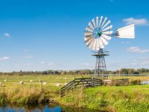 Meadow, moor and windmill in nature reserve Oude Venen between E. Grassland, moor and windmill in national park Oude Venen between Eernewoude en Oudega Stock Photography