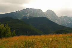 meadow and mountain of Giewont Stock Image