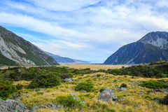 Meadow and mountain landscape in Mount Cook National Park Stock Image