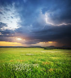 Meadow in mountain Stock Image