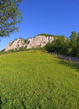 green meadow, mountain and blue sky Royalty Free Stock Photo