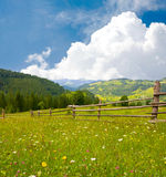 Meadow in mountains. Meadow with fence in mountains Royalty Free Stock Photo