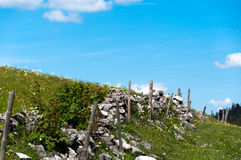 Meadow in mountains Royalty Free Stock Photos