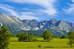 Meadow and mountains Stock Photo