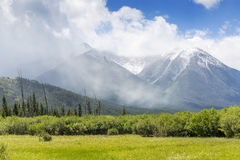 Meadow with Mountains in the Background - Banff NP, Canada. Spring Meadow with the Rocky Mountains in the background - Banff National Park, Alberta, Canada stock photography