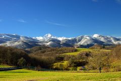 Meadow with Pyrenees mountains in background. Grass meadow with trees and snowy mountains in background. Photography taken in the Baronnies, a region of the Stock Photo