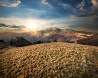 Meadow in the Mountains Stock Images