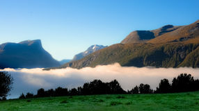 Meadow in the mountains in the clouds of fog Royalty Free Stock Photography