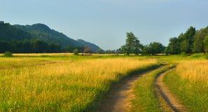 Meadow in mountains Stock Photos