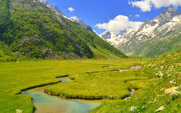 Meadow in mountains Royalty Free Stock Photography