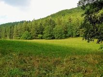 Meadow in mountains separated shadow Royalty Free Stock Photography