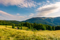Meadow near the forest at the foot of the mountain. Wooden sheds in tall grass. beautiful summer evening landscape in the Aretska mountain area, Transcarpathia Royalty Free Stock Photo