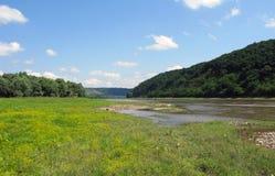 Meadow near the river Royalty Free Stock Photos
