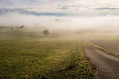 Meadow in the north austria ober osterreich in misty mornig cross. Lanscape in autumn, austria lone way Royalty Free Stock Photo