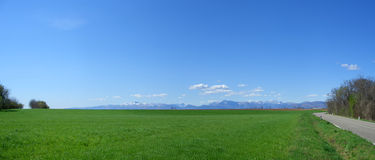 Meadow panorama Stock Image