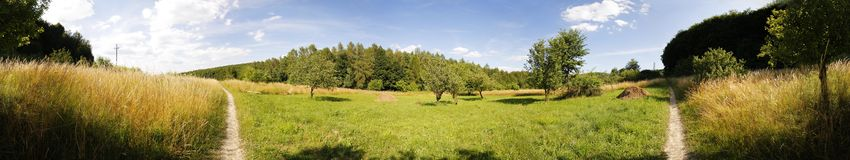 Meadow panorama Stock Images