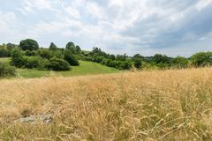 Meadow and parkland at the Divoka Sarka in Prague. Dry meadow, parkland and cloudy sky on a sunny day at Divoka Sarka. It`s a nature reserve on the outskirts of Royalty Free Stock Photos