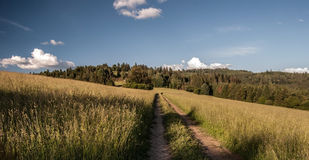 Meadow with pathway, hill on the background and blue sky with clouds above Oscadnica village in Slovakia. Meadow with pathway, hill on the background and blue Royalty Free Stock Photography