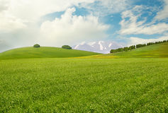 Meadow. Peaceful landscape with meadow, hills, mountains and sky Royalty Free Stock Photos
