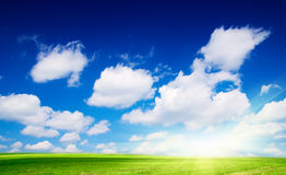 Meadow and perfect blue sky Stock Image