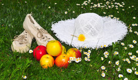 Meadow picnic garden hat Stock Images