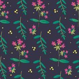 Botanical floral seamless pattern. vector flower print. Meadow plants and flowers print vector illustration