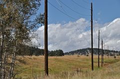 Meadow and Poles Stock Photo