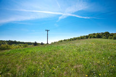 Meadow and power line Stock Images