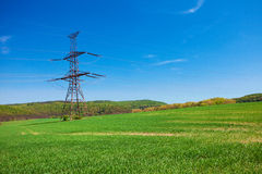 Meadow and power line Royalty Free Stock Photos